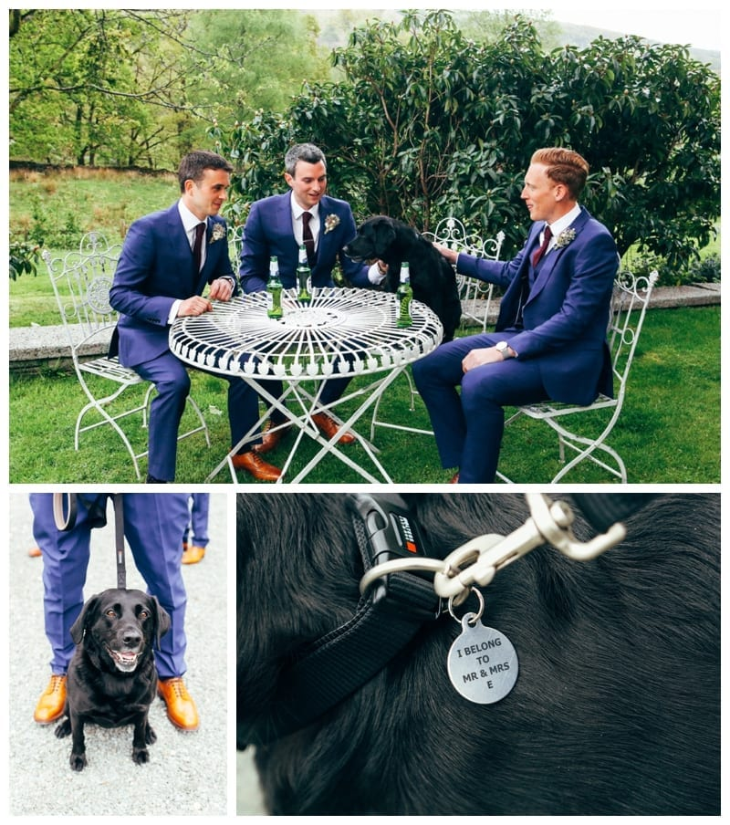 Top tips for Happy Dogs at Weddings