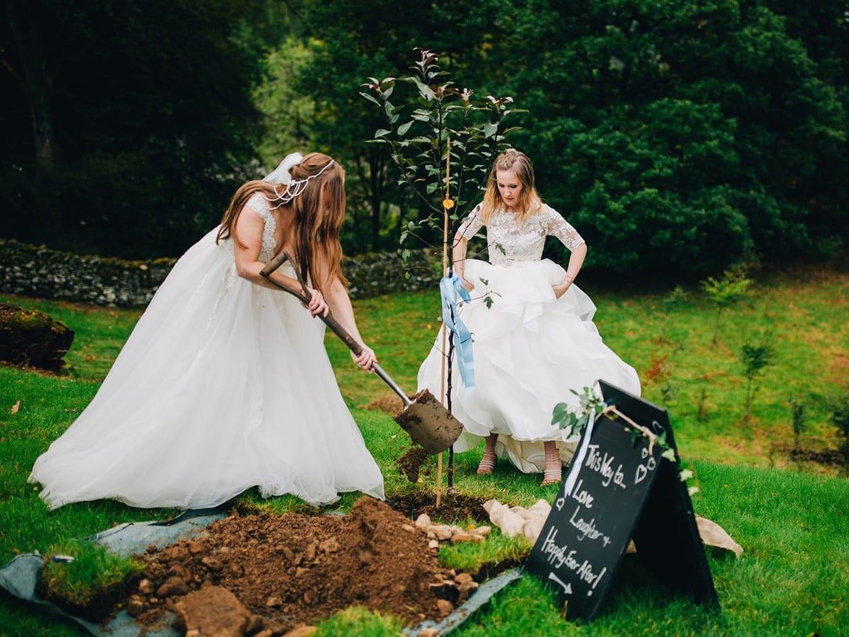Plant a wedding tree
